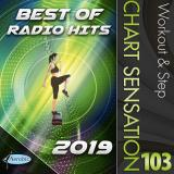 DOWNLOAD!  NEU! WORKOUT & STEP 103 RADIO HITS